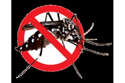 Ovitrap Larvae Killer